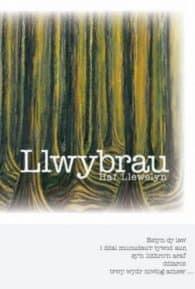 Llwybrau - Haf Llywelyn