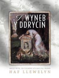 I Wyneb y Ddrycin - Haf Llywelyn