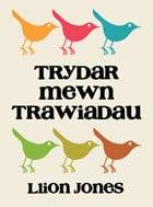Trydar mewn Trawiadau